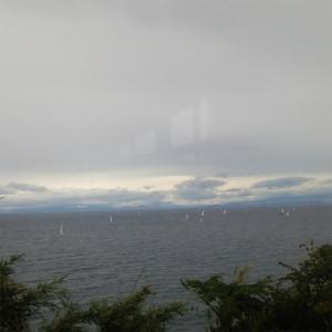 ヨットもゆれる強風