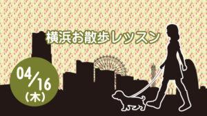 横浜お散歩レッスン04月